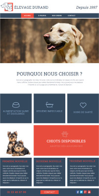 A website introducing your pets